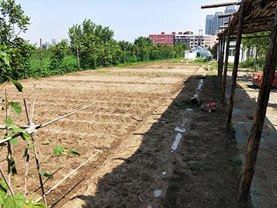 有机种植<br/>土地认领,有几件种植,农产共享<br/>远离毒菜,来幸福农场认领一块小菜地,男耕女织,体验纯天然的生活乐趣。